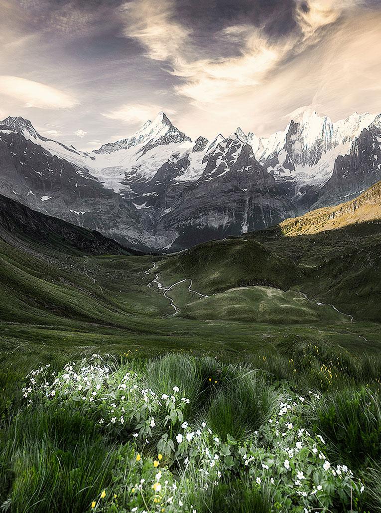 Entdecke Alpienne – Die Kraft der Alpen